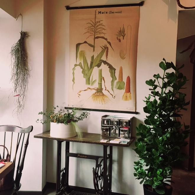 豊平区 8月OPENのお洒落カフェ